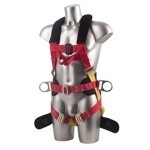 8 point harness